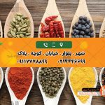 طرح لایه باز کارت ویزیت عطاری و گیاهان دارویی 005